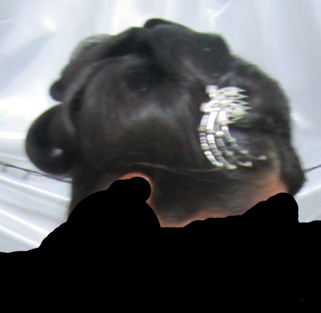 مدل آرايشي مو براي انواع مراسم,آرايش مو براي مراسم عروسي,ارايش مو براي مراسم عقد,آرايش مو براي مراسم جشن ,آرايش مو براي جشن تولد,آرايش مو براي عقدخواني,آرايش مو براي عروسي,آرايش مو براي پارتي ها,مدل هاي جديد آرايشي مو براي مراسم عقد و عروسي,مدل موي نامزدي,مدل هاي موي زنانه نامزدي,