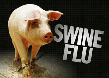 راه های جلوگیری از ابتلا به انفولانزای خوکی