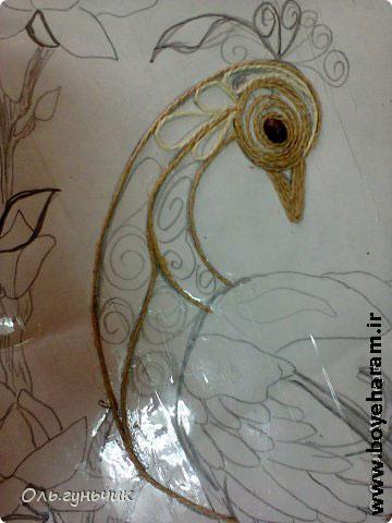 ساخت عکس طاووس,تصاویر طاووس