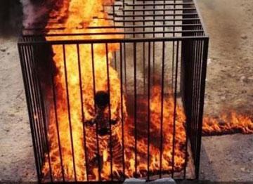 خلبان اردنی,اخبار داعش,جدیدترین اخبار داعش,خبرهای داعش,آتش سوزی خلبان,اخبار خلبان آتش گرفته