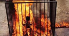 خبر آتش زدن خلبان اردنی به دست داعش