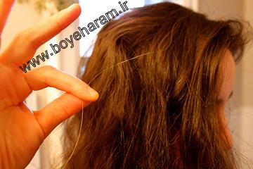 دلایل سفید شدن مو در دوران جوانی و نوجوانی