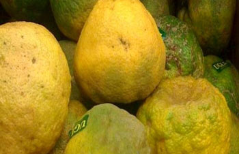 میوه اوگلی,تصاویر میوه اوگلی,عکس میوه اوگلی