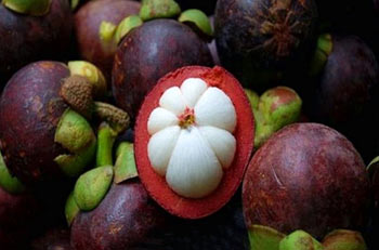 میوه مانگوستین,تصاویر میوه مانگوستین,عکس میوه مانگوستین