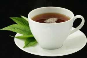 اثرات چای سبر,اثرات چای سبزلاغری,آیا چای سبز لاغری ضرر دارد؟,ضرر و زیان های چای سبزلاغری,انواع چای سبز,خرید چای سبزلاغری,چای سبزلاغری تیما,چای سبزلاغری سینا,خرید آنلاین چای سبز لاغری,فواید چای سبزلاغری,ویژگی های اصلی چای سبزلاغری,ویژگی های چایی سبز,چایی سبزدر درمان چه بیماری موثر است؟,فواید مهم چایی سبز چیست؟