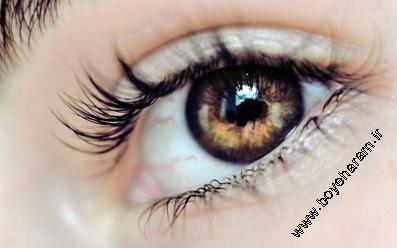 آموزش زیباتر کردن چشم,خوشکلتر کردن چشم,غذاهایی که باعث زیباتر کردن چشم,خوراکی برای زیبا شدن چشم,چه چیزی باعث زیباتر شدن چشم میشود؟,آموزش آرایش چشم