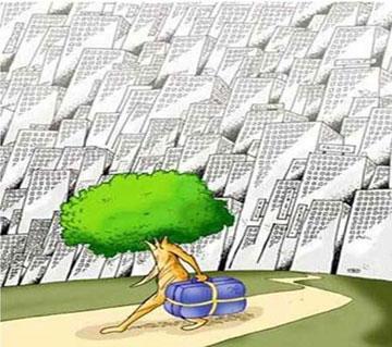کاریکاتور,کاریکاتور درخت,کاریکاتور جنگل