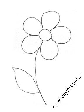 نقاشی,نقاشی گل