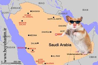 عربستان و موش کور,سیاست عربستان و موش کور