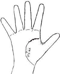 فال کف دست,آموزش فال کف دست,طالع بینی از روی دست,دیدن عمر افراد از روی کف دست,دیدن طول عمر افراد از روی کف دست,انواع خطوط روی دست,شناسایی انواع خطوط روی دست,خطوط روی دست نشان دهنده چیست؟