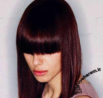مدل موی شرابی,مدل موی عنابی,مدل های رنگی مو
