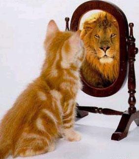 ویژگی های مهم افراد بی اعتماد,مهم ترین ویژگی های افراد با اعتماد به نفس پایین,داشتن اعتماد به نفس پایین,بالا بردن اعتماد به نفس,بهترین راه های بالا بردن اعتمادبه نفس,داشتن اعتماد به نفس,افرادی با اعتماد به نفس بالا