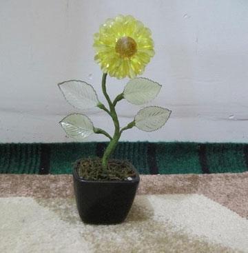 گل افتابگردان کریستالی