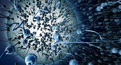 فقدان اسپرم در مایع منی,علل ایجاد آزواسپرمی,درمان آزواسپرمی
