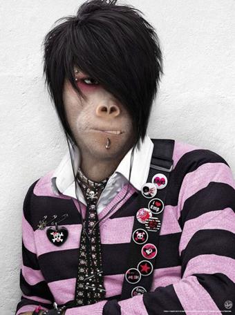 میمون شبیه آدم,ادم شبیه میمون,میمون با لباس انسان