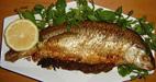 آموزش روش های پخت ماهی