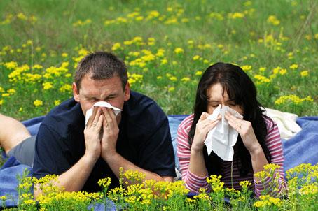 عوامل اصلی آلرژی فصلی,درمان قطعی برای آلرژی فصلی