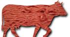 آیا گوشت گاو بیشتر ضرر دارد یا گوشت گوسفند؟
