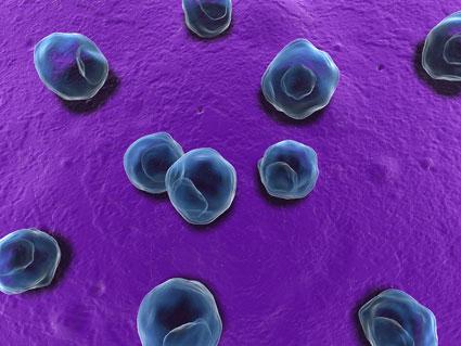 آشنایی با کلامیدیا,بیماری کلامیدیا چیست؟,درمان قطعی بیماری کلامیدیا