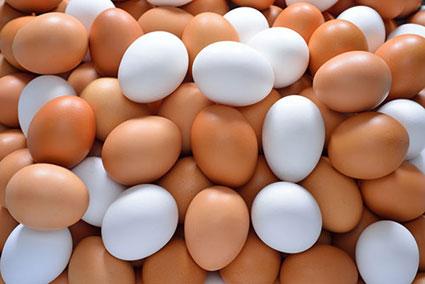 منبع پروتئین چیست؟,خوراکی های پرازپروتئین,غذاهای پراز پروتئین