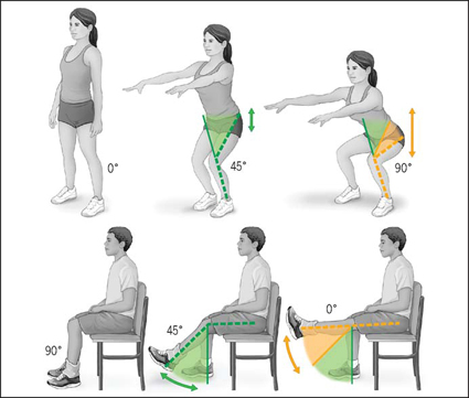 آموزش حرکات ورزشی,حرکات ورزشی مفید برای زانو,ترمیم زانو با ورزش