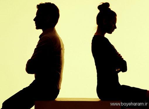 سایت زناشویی,آموزش های زناشویی,دانستنی های قبل ازدواج