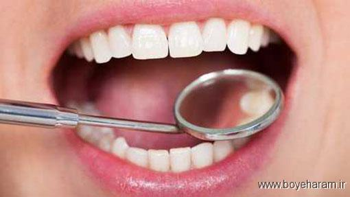 راه های طبیعی از بین بردن جرم دندان,میوه های از بین برنده جرم دندان,چه میوه هایی جرم دندان را ازبین میبرد