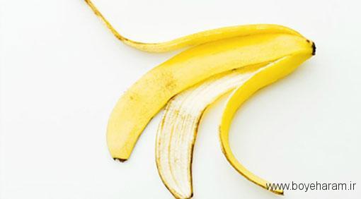خاصیت قسمت های مختلف میوه,فواید پوست مرکبات,خواص ساقه سبزیجات,خواص هسته اناناس