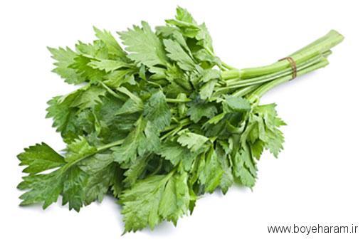 خواص ساقه سبزیجات,خواص هسته اناناس,خواص شگفت آور برگ هویج,فواید پوست پیاز