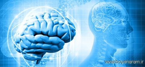 سالم بودن مغز,مغز مقاوم,پیری مغز,پیری زودرس مغز