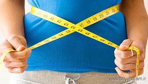 خاصیت اسپند برای بدن,فواید اسپند,خواص اسپند برای لاغرس,تاثیر اسپند در لاغری,لاغری با اسپند