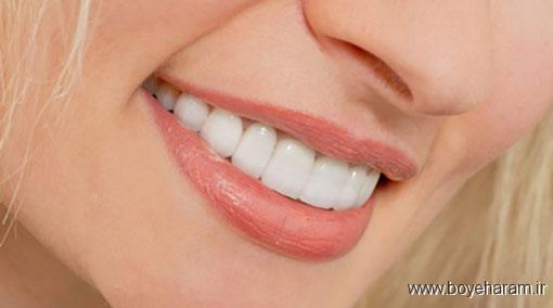 سلامت,سایت سلامت,سایت پزشکی,آموزش های پزشکی,دندان پزشکی