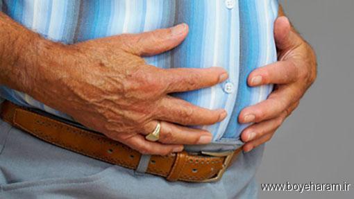 نشانه های بیماری چربی خون,درمان بیماری چربی خون,داروی گیاهی برای درمان چربی خون,