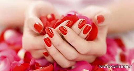 فواید گل رز برای پوست,خواص گل رز برای پوست,خاصیت گل رز برای زیبایی پوست