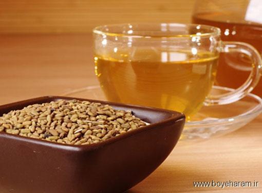 فواید دانه شنبلیله برای سلامتی بدن,درمان سوزش سرِ دل با دانه شنبلیله,نابودی دیابت با شنبلیله