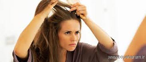 درمان ریزش مو با داروهای گیاهی,راه های پیشگیری از ریزش مو,روش های درمان ریزش مو