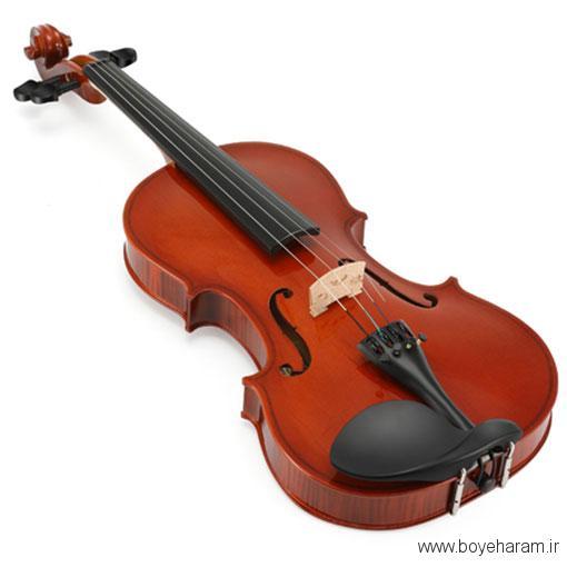 انواع ویولن,سازندگان ویولن,معروفترین نوازندگان غربی ویولن,معروفترین نوازندگان ایرانی ویولن