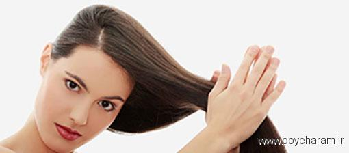 روغن های مناسب پوست سرراهنمای استفاده از روغن های تقویت مو,کدام روغن ها برای کدام موها منسب است,