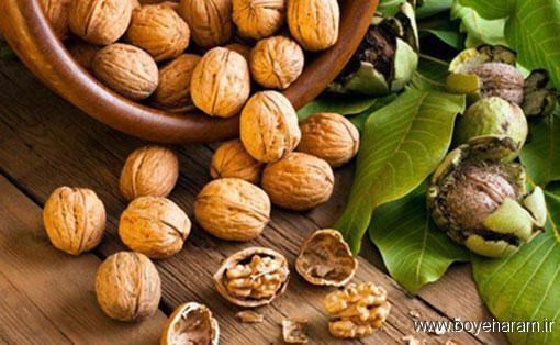 سایر مواد شیمیایی مفید در گردو,فواید بی نظیر روغن گردو,روغن گردو مفید برای پوست و مو
