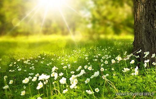 داستان های خواندنی,دلنوشته,دلنوشته مذهبی,دلنوشته کاش می دویدم اما..,دلنوشته زیبای کاش می دویدم,دلنوشته رمانتیک,دلنوشته غمگین