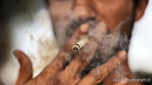 سیگار کشیدن باعث چه بیماری می شود,سیگار یکی از علتهای ابتلا به سرطان ریه