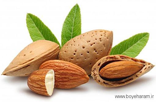 خواص طبی بادام شیرین,مضرات بادام,روغن بادام,خواص روغن بادام شیرین