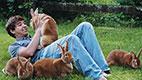 بیماری تب خرگوشی یا تولارمی