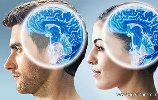 آیا مغز زنان زودتر از مغز مردان پیر میشود؟,مغز مردان و زنان,تفاوت مغز زنان و مردان