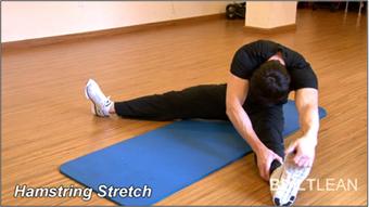 زیبایی اندام,تمرینات هوازی,تمرینات قدرتی,حرکات کششی,ورزش,ورزش بانوان