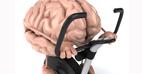 ورزش چه اثراتی بر مغز و روان انسان دارد؟