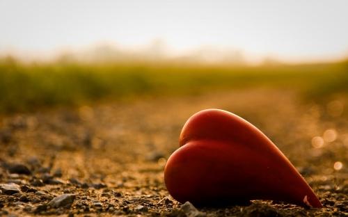 عکس و تصاویر رمانتیک