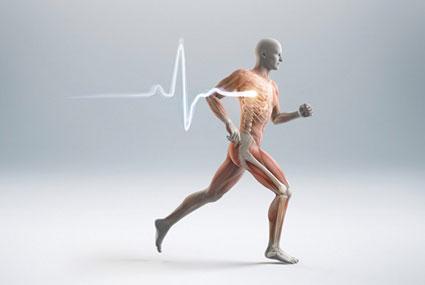 قویتر کردن استخوان ها با ورزش,قوی کردن استخوان با ورزش,آموزش درمان پوکی استخوان با ورزش