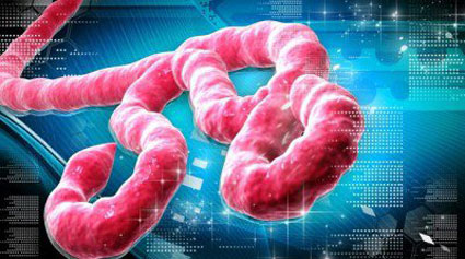جلوگیری از بیماری ابولا,درمان بیماری ابولا,پیشگیری از بیماری ابولا,بیماری ها و راه درمان